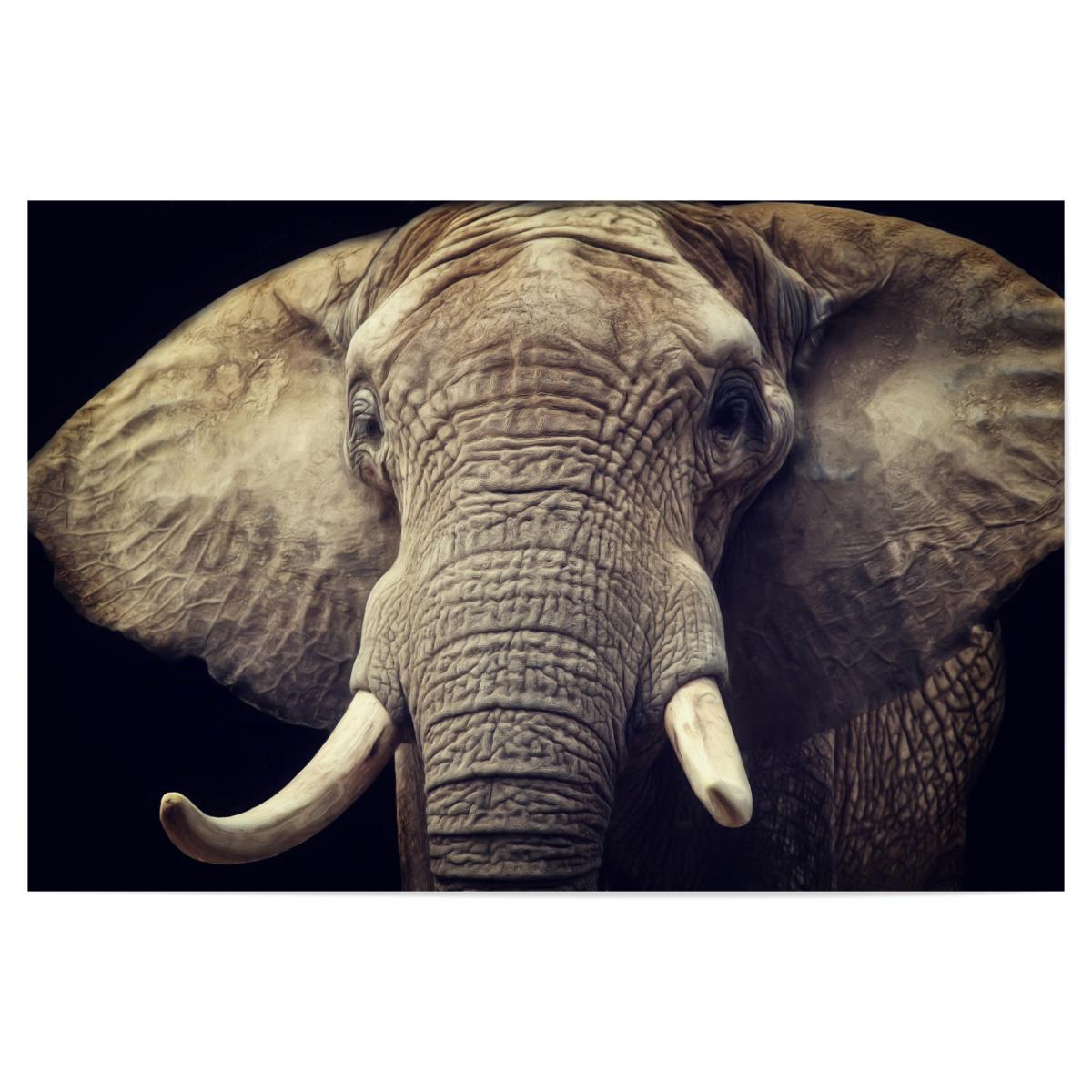 Elefanten Portrait als Poster bei artboxONE kaufen