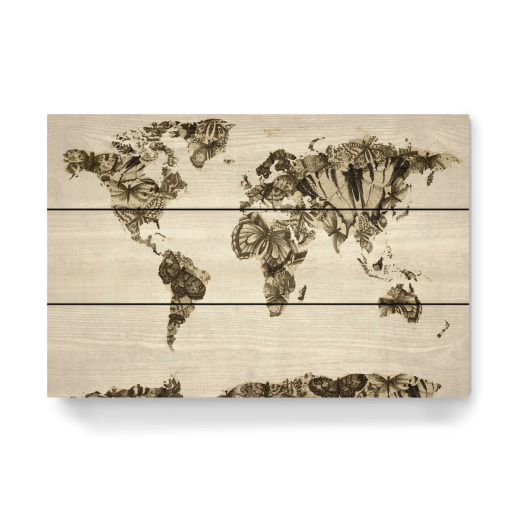 Purchase The Butterfly World Map As A Gallery Print At Artboxone