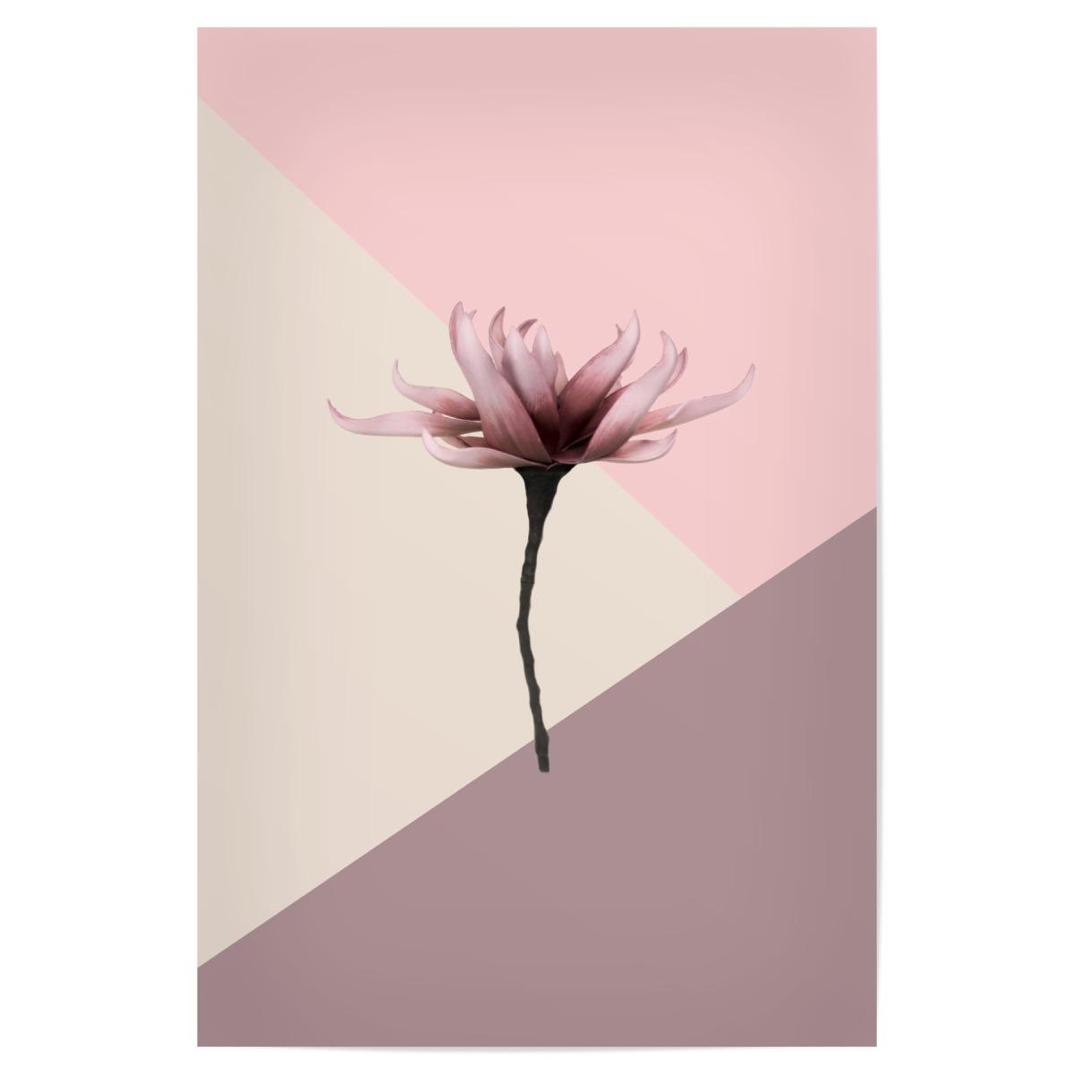 Aesthetic Flower 20x20 cm Poster