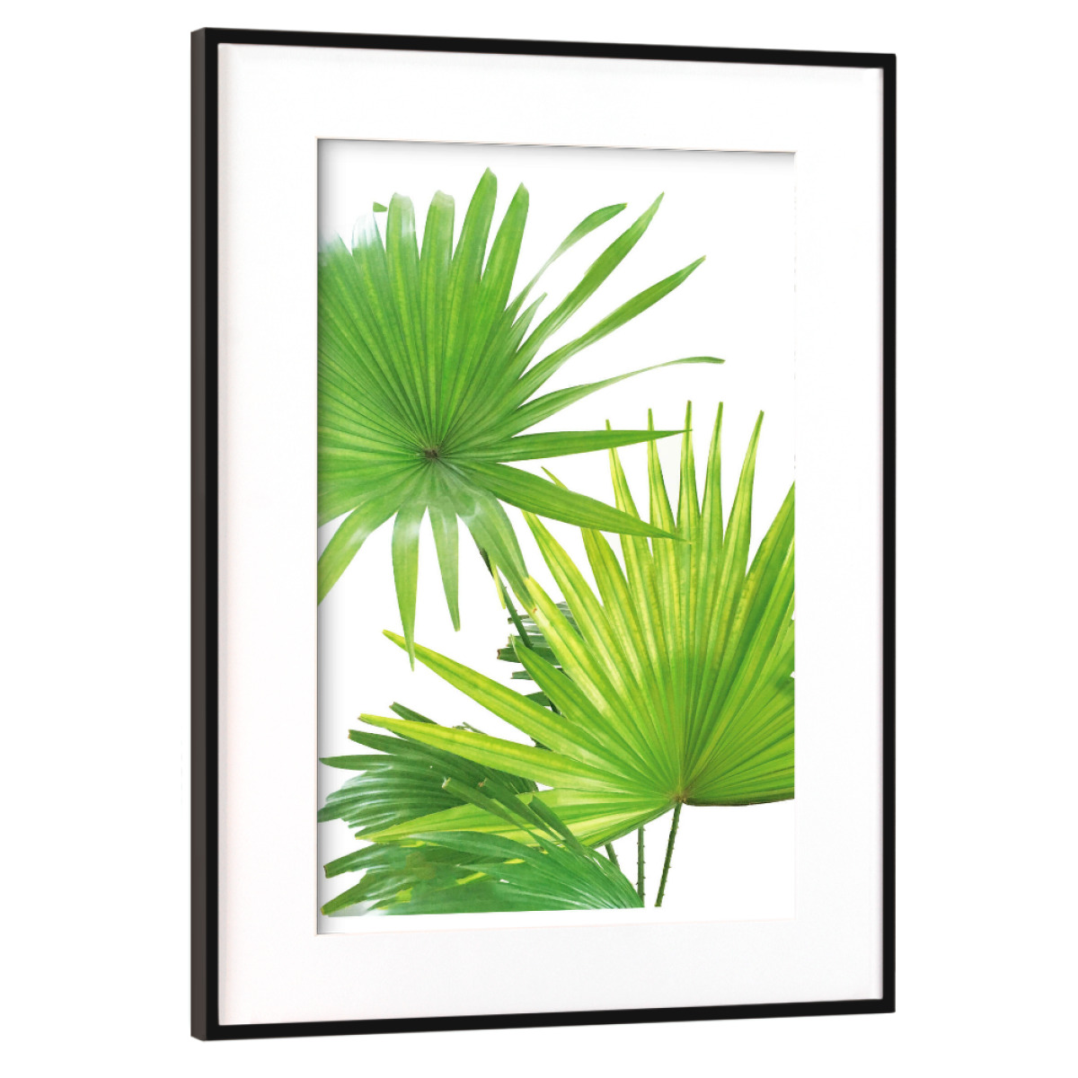 Purchase The Palmenblatter As A Frame At Artboxone