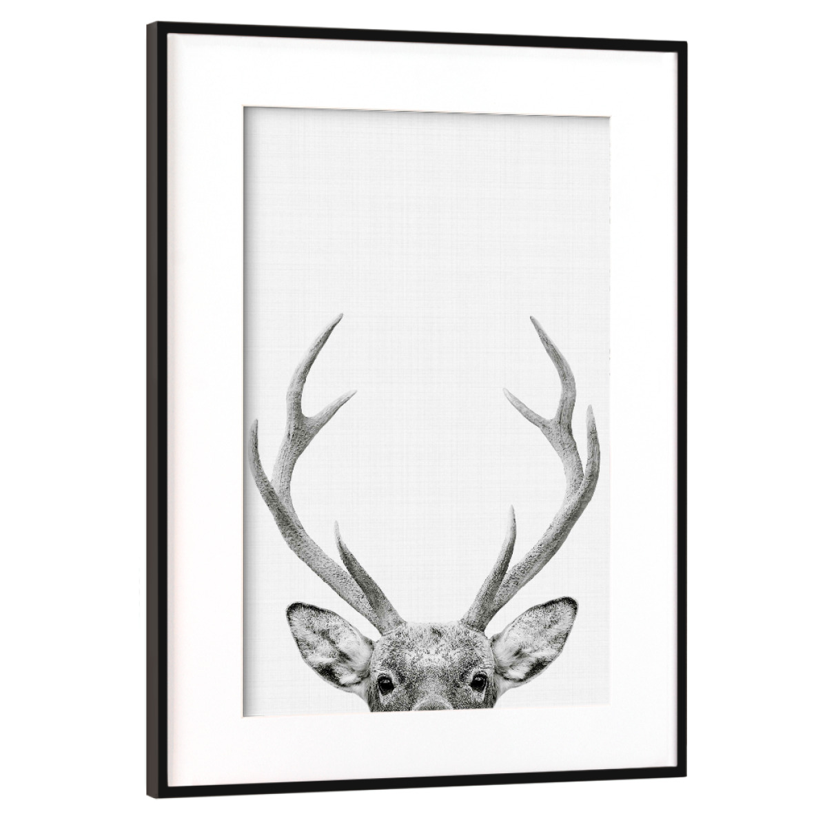Purchase the Deer Portrait as a Frame at artboxONE