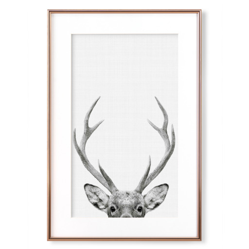 Deer Portrait Gerahmt
