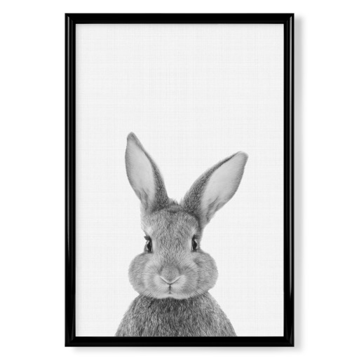 Bunny (Rabbit) Portrait Poster