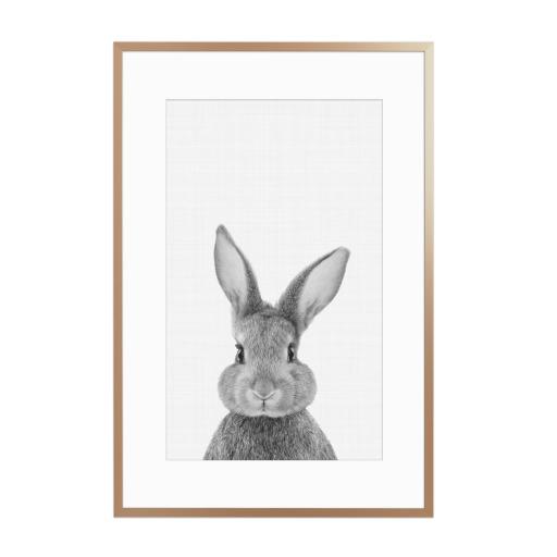 Bunny (Rabbit) Portrait Gerahmt
