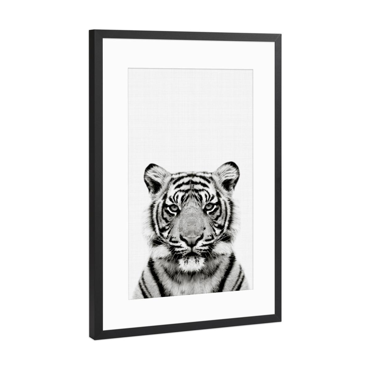 Tiger Portrait als Gerahmt bei artboxONE kaufen