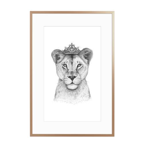 The Lioness Queen Gerahmt